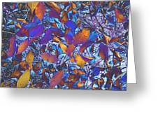 Textured Blue Greeting Card by Beth Akerman