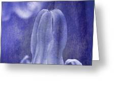 textured bluebell in blue Greeting Card by Meirion Matthias