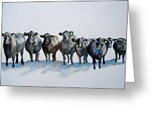 The Angus Eight Greeting Card by Sharon Mick