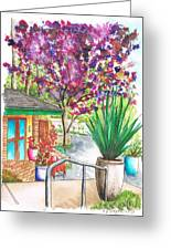 The Arboretum Gift Shop In Arcadia-california Greeting Card by Carlos G Groppa