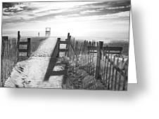The Beach In Black And White Greeting Card by Dapixara Art