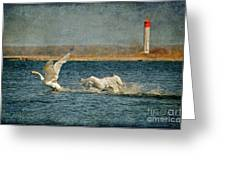 The Chase Is On Greeting Card by Lois Bryan