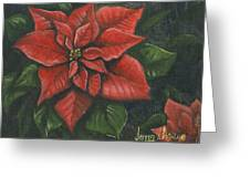 The Christmas Flower Greeting Card by Jeff Brimley