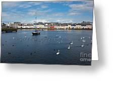 The Claddagh Galway Greeting Card by Gabriela Insuratelu