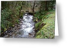 The Creek Greeting Card by Laurie Kidd