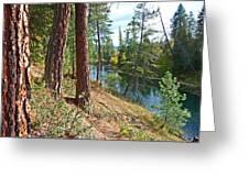 The Creek Greeting Card by Nancy Harrison