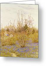 The Cuckoo Greeting Card by Helen Allingham