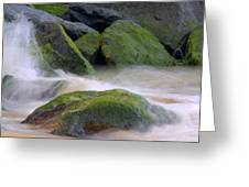 The Dancing Tide Greeting Card by Brad Scott