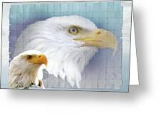 The Eagles Focus Greeting Card by Debra     Vatalaro