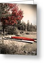 The End Of Summer Greeting Card by Cathy  Beharriell