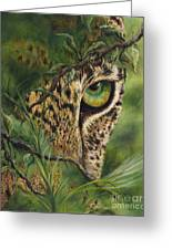 The Eye Greeting Card by Myra Goldick