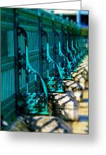 The Fence Greeting Card by Perry Webster