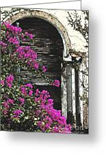 The Forgotten Window Greeting Card by Anahi DeCanio