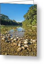 The Frio River In Texas Greeting Card by Andre Babiak