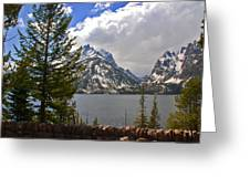 The Grand Tetons And The Lake Greeting Card by Susanne Van Hulst