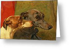 The Greyhounds Charley and Jimmy in an Interior Greeting Card by John Frederick Herring Snr