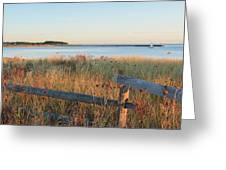 The Harbor Square Greeting Card by Bill Wakeley