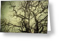 The Haunted Tree Greeting Card by Lisa Russo