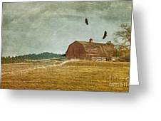 The Homecoming Greeting Card by Reflective Moment Photography And Digital Art Images