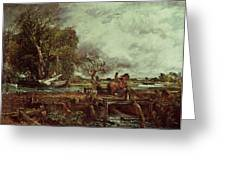 The Leaping Horse Greeting Card by John Constable