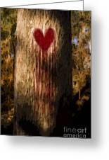The Lonely Tree Greeting Card by Jorgo Photography - Wall Art Gallery