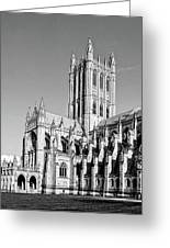 The National Cathedral In Washington Dc Greeting Card by Brendan Reals