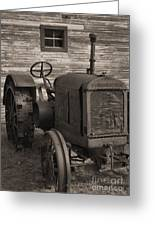 The Old Mule  Greeting Card by Richard Rizzo