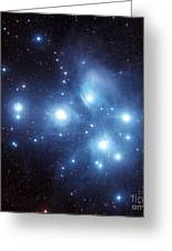 The Pleiades Star Cluster Greeting Card by Charles Shahar
