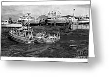The Real Alaska - Caught At Low Tide Greeting Card by Pete Hellmann