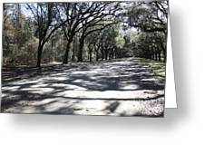 The Road Home Greeting Card by Carol Groenen