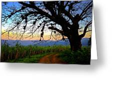 The Road Less Traveled Greeting Card by Skip Hunt