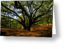 The Sacred Oak Greeting Card by David Lee Thompson