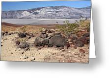 The Salt Flats Of Death Valley Greeting Card by Christine Till