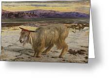 The Scapegoat Greeting Card by William Holman Hunt