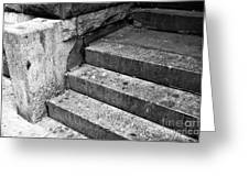The Stoop Mono Greeting Card by John Rizzuto
