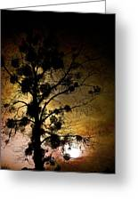 The Sunset Tree Greeting Card by Loriental Photography