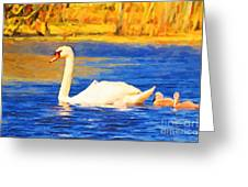 The Swan Family . Photoart Greeting Card by Wingsdomain Art and Photography