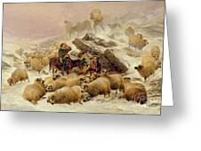 The Warmth Of A Wee Dram Greeting Card by TS Cooper