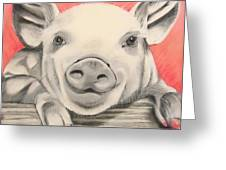 This Little Piggy... Greeting Card by Michelle Hayden-Marsan