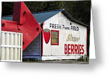 This Way For Strawberries Greeting Card by David Lee Thompson