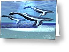 Three Blue Whales Move Greeting Card by Corey Ford