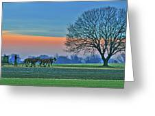 Through The Fields Greeting Card by Scott Mahon