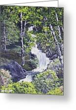 Through The Woods Greeting Card by Darla Boljat