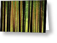 Through the Woods Greeting Card by Svetlana Sewell