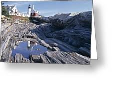 Tide Pool Reflection Pemaquid Point Lighthouse Maine Greeting Card by George Oze