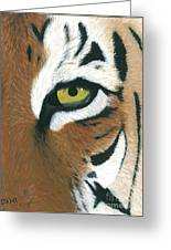 Tiger Greeting Card by Dani Moore