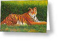 Tiger Greeting Card by Lore Rossi