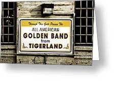 Tigerland Band Greeting Card by Scott Pellegrin