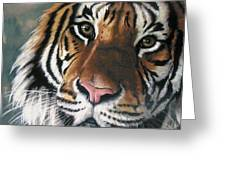 Tigger Greeting Card by Barbara Keith