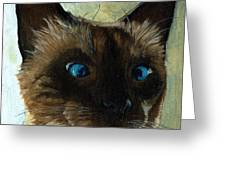 Totally Siamese - Cat Portrait Oil Painting Greeting Card by Linda Apple